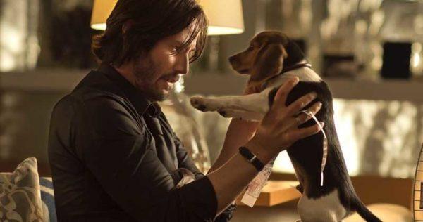 Keanu y un perrito