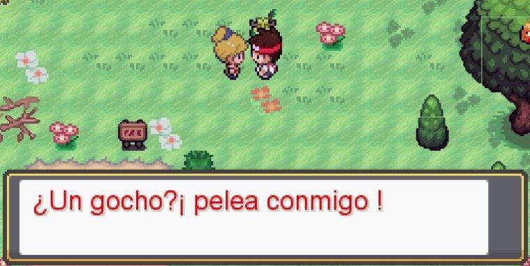 un gocho pelea conmigo pokemon