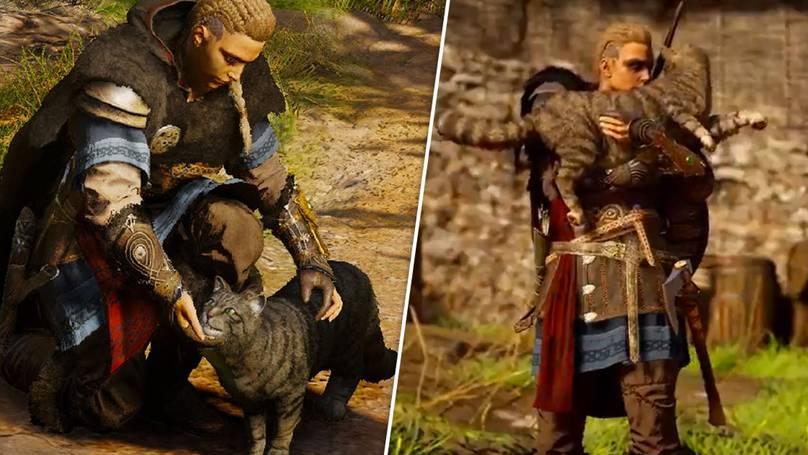 Acariciar gatos en Assassins Creed Valhalla